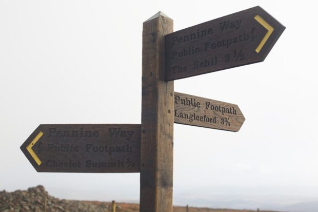 Pointing the way in the Cheviot hills. Photograph © Colin McPherson 2014, all rights reserved.