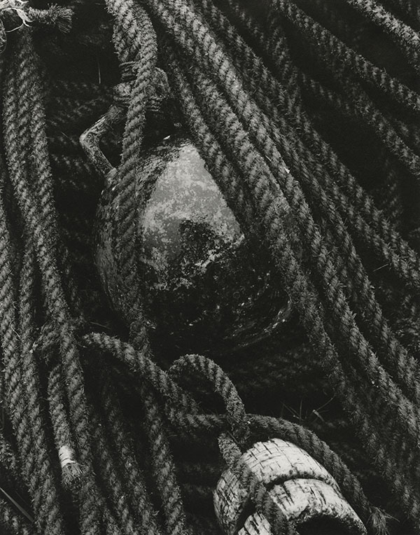 Paul Strand (1890-1976) Ropes and Buoy, South Uist, Hebrides, 1954 Photograph (gelatine silver print): 24.1 x 19.3 cm Scottish National Portrait Gallery © Aperture Foundation Inc., Paul Strand Archive