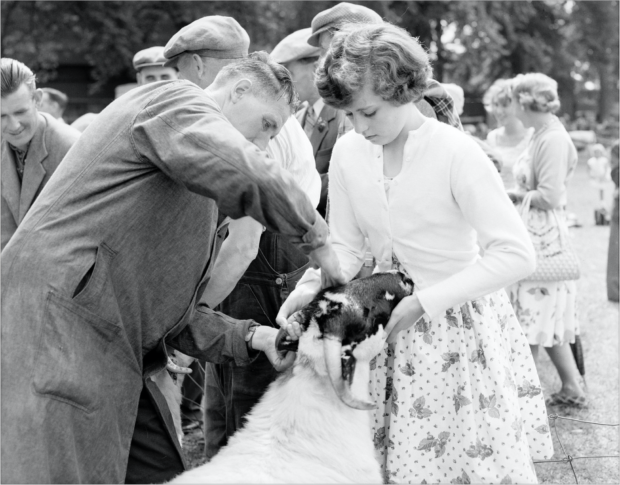 Elizabeth Bruges, Perthshire Highland Show. Image by John Watt between 1959 and 1961, © Perth Museum and Art Gallery archive.