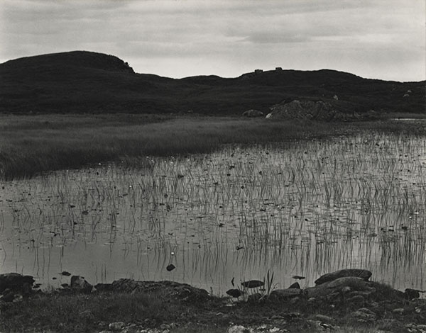 Paul Strand (1890-1976) Loch and Lilies, South Uist, Hebrides, 1954 Photograph (gelatine silver print): 11.4 x 14.6 cm Scottish National Portrait Gallery © Aperture Foundation Inc., Paul Strand Archive