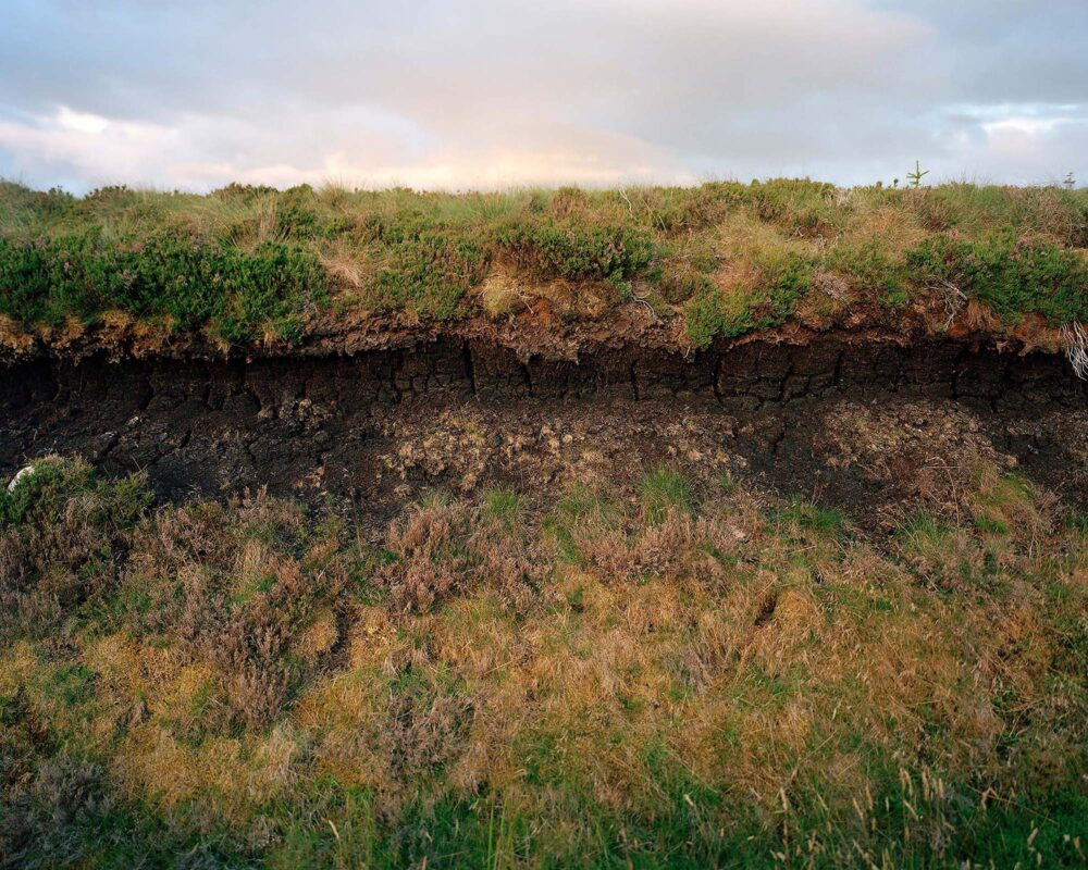 Peat cross section, from the series 'The Flows' © Sophie Gerrard 2017